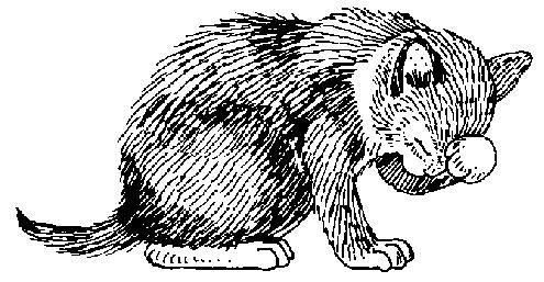 Нарисованные картинки с кошками